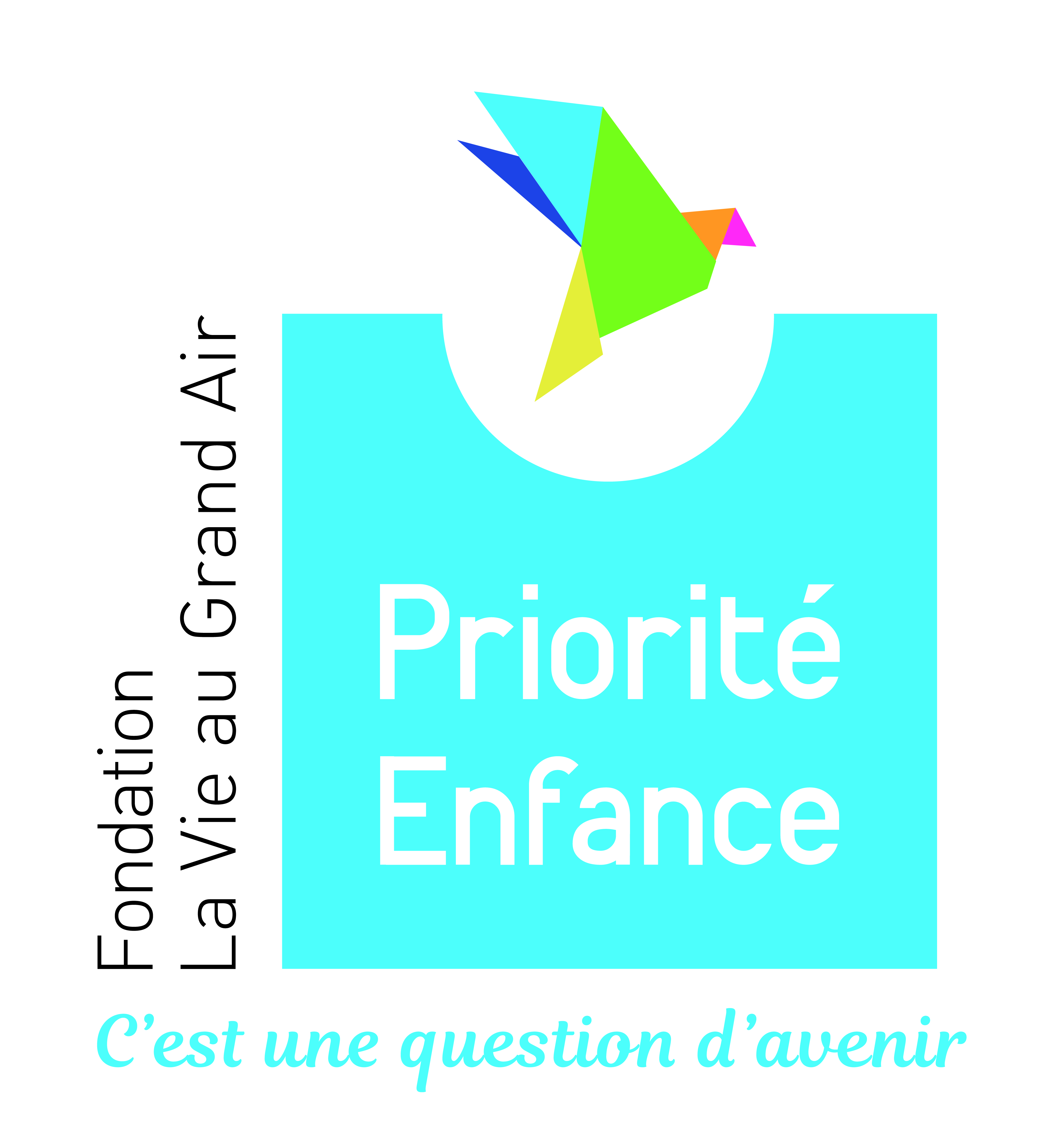 Logo Fondation La Vie au Grand Air